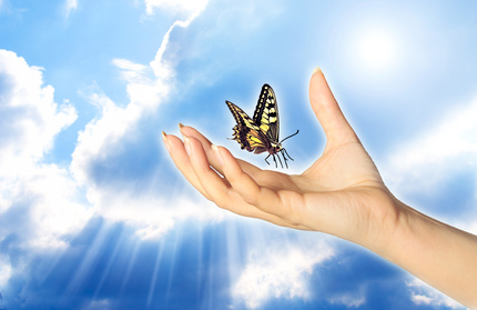 hand_butterfly