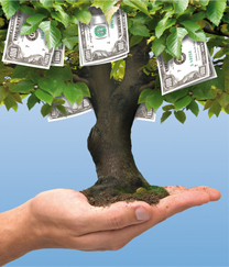 money_tree