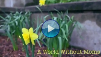 [Video] A World Without Moms???